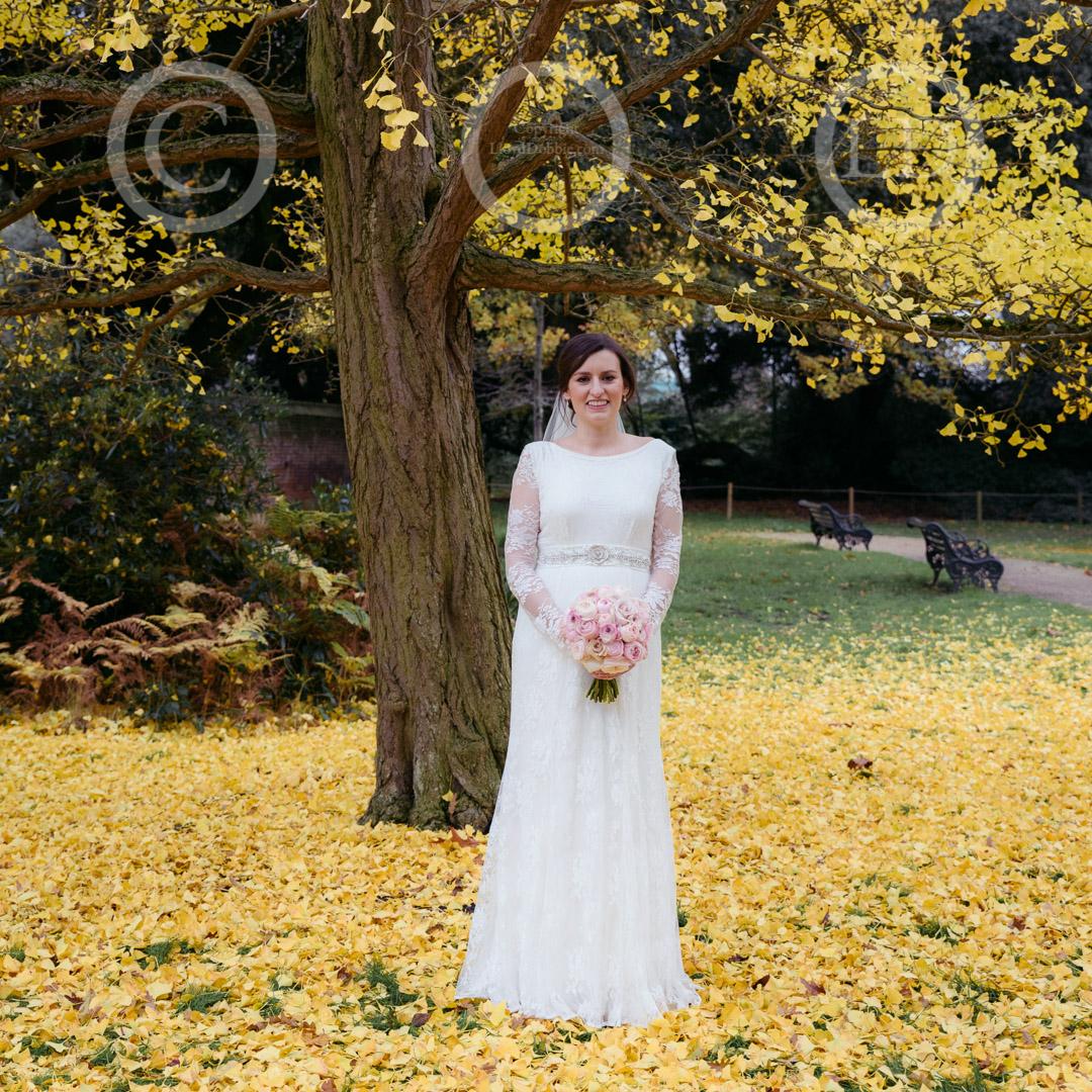 bride under autumnal tree