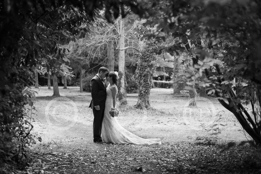 newlyweds pose together in nonsuch park